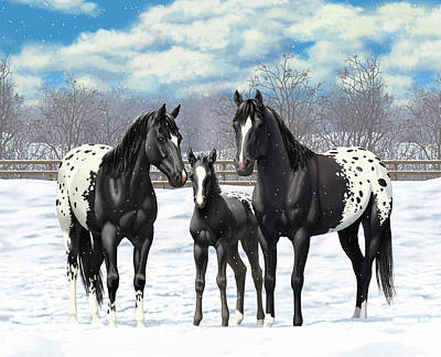 Black Appaloosa Horses In Winter Pasture Poster by Crista Forest
