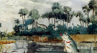 Poster featuring the painting Black Bass Florida by Pg Reproductions