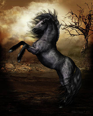 Black Beauty Poster by Shanina Conway