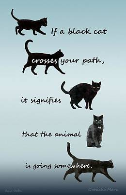Black Cat Crossing Poster by Ivana Westin