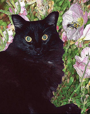 Black Cat Startled By A Bee Poster