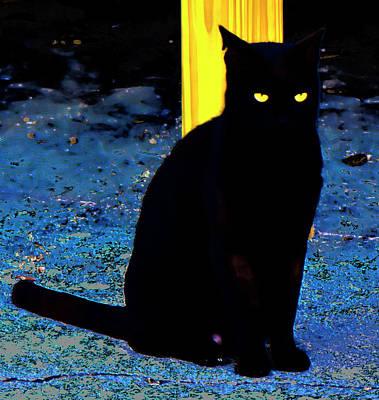 Black Cat Yellow Eyes Poster by Gina O'Brien
