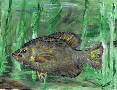 Black Crappie In River Water Poster by Janice Knauss