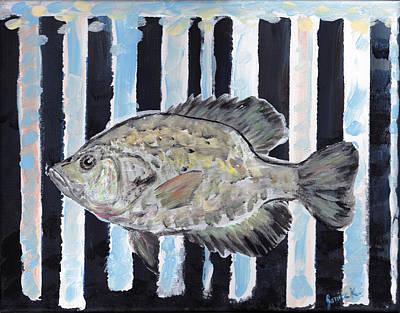 Black Crappie On Dark Stripes Poster by Janice Knauss