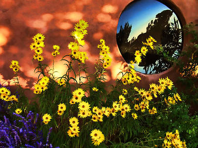 Poster featuring the photograph Black-eyed Susans And Adobe by Paul Cutright