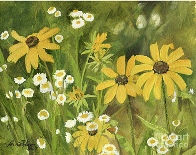 Black-eyed Susans In A Field Poster by Laurie Rohner