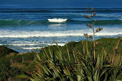 Black Head Beach Dunedin Poster by Terry Perham