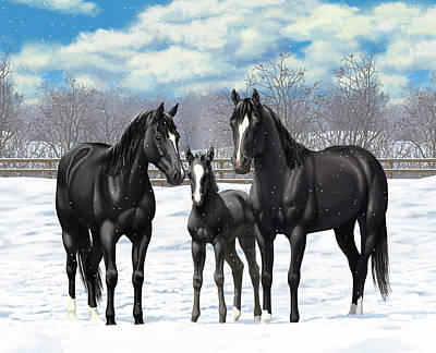 Black Horses In Winter Pasture Poster by Crista Forest