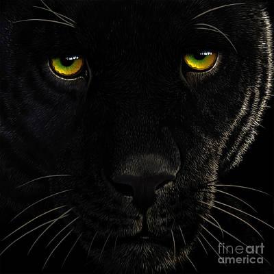 Black Leopard Poster