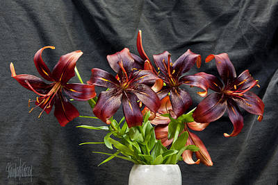 Black Lilies Poster