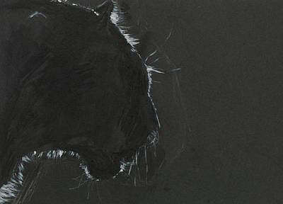 Black Panther  Poster by Dan Comaniciu