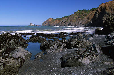 Black Sand - Sinkyone Wilderness Poster by Soli Deo Gloria Wilderness And Wildlife Photography