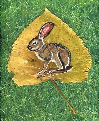 Black Tail Jack Rabbit  Poster