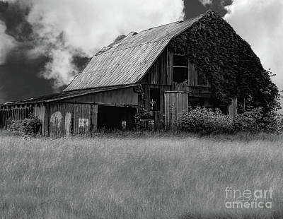 Black White Barn Poster