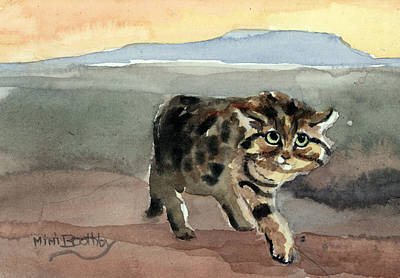 Blackfooted Cat Poster