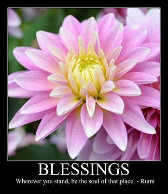 Blessings Dahlia Poster by P S