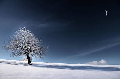 Bleu Comme Neige Poster by Philippe Sainte-Laudy Photography
