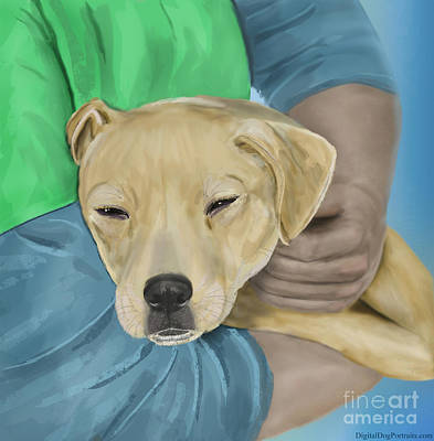 Blond Dog Is Being Cradled By A Person Poster