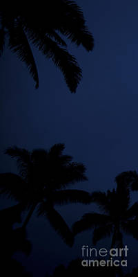 Blood Moon In Hawaii  - Triptych   Part 1of 3 Poster by Sean Davey