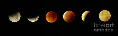 Blood Moon Phases Poster by Rudi Prott