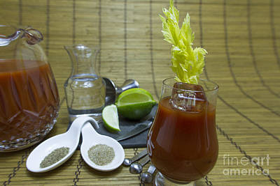 Bloody Mary Cocktail With Ingredients Poster