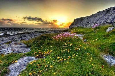 Blooming Burren Poster