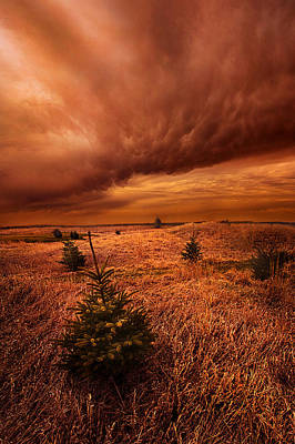 Blowing By Poster by Phil Koch