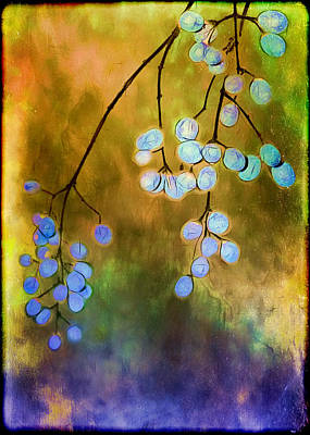 Blue Autumn Berries Poster