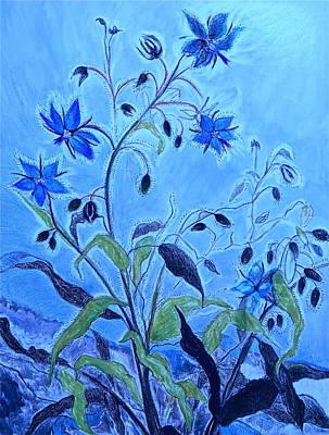 Blue Borage Poster