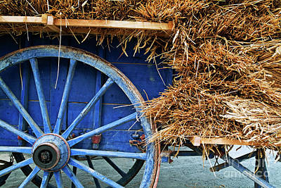 Blue Cart Full With Load Of Straw Poster by Sami Sarkis