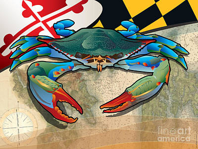 Blue Crab Of Maryland Poster