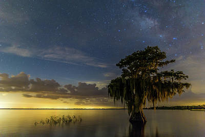 Blue Cypress Lake Nightsky Poster