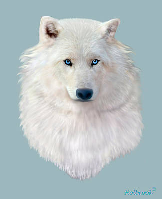 Blue-eyed Snow Wolf Poster