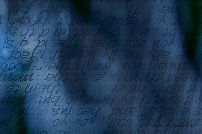 Blue Glimpse Poster by Vicki Ferrari
