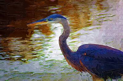 Poster featuring the photograph Blue Heron 2 by Donna Bentley