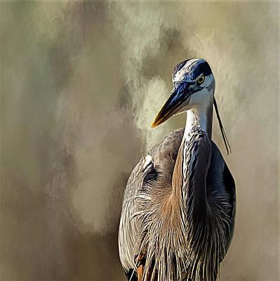 Blue Heron Poster by Cyndy Doty