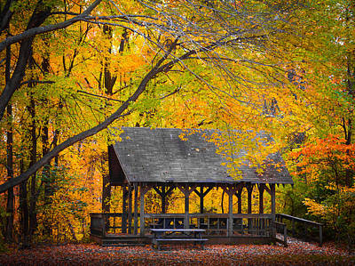 Blue Heron Park In The Fall 2 Poster