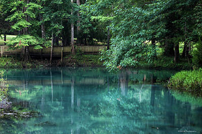 Blue Hole Spring 2 Poster by Debra Forand