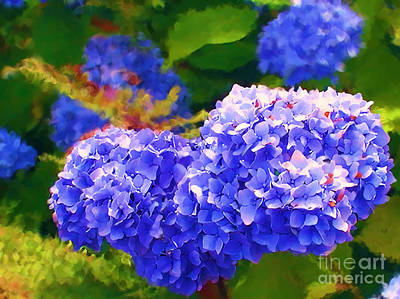 Blue Hydrangea Poster by Methune Hively