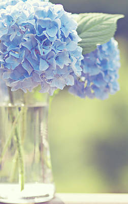 Blue Hydrangea Poster by Photography by Angela - TGTG
