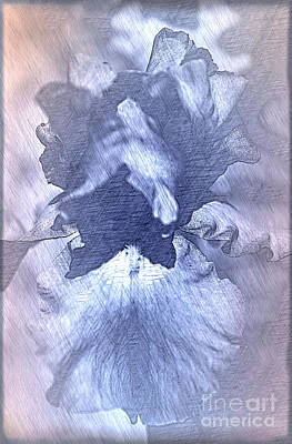 Blue Iris Abstract Poster