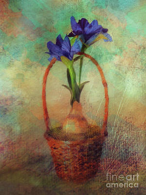 Poster featuring the digital art Blue Iris In A Basket by Lois Bryan