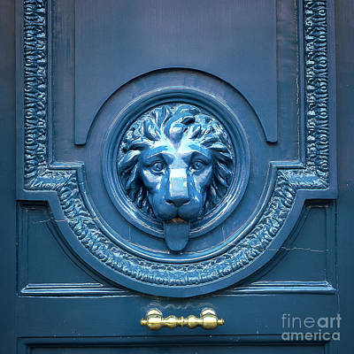 Blue Lion Head Door Poster
