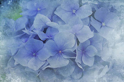 Blue Moments Poster by Elaine Manley