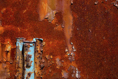 Poster featuring the photograph Blue On Rust by Karol Livote