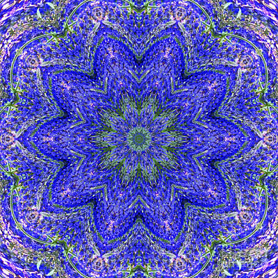 Blue Purple Lavender Floral Kaleidoscope Wall Art Print Poster by Carol F Austin