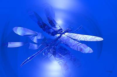 Blue Reflections Dragonfly Poster