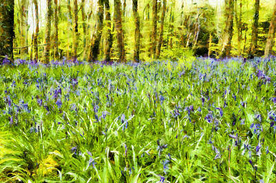 Bluebell Wood Poster by Nigel R Bell