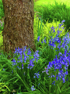 Poster featuring the photograph Bluebells Of Springtime  by Connie Handscomb