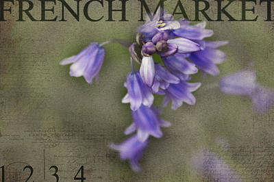 Bluebells Poster by Rebecca Cozart